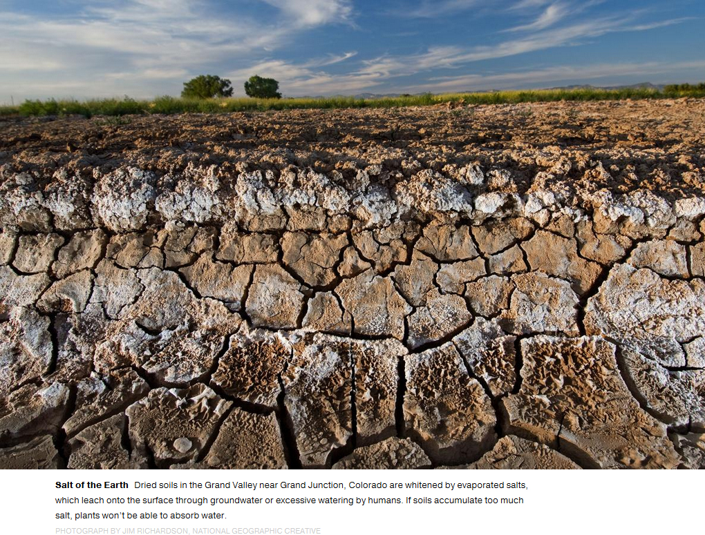National geographic article highlights importance of soil for What is soil resources